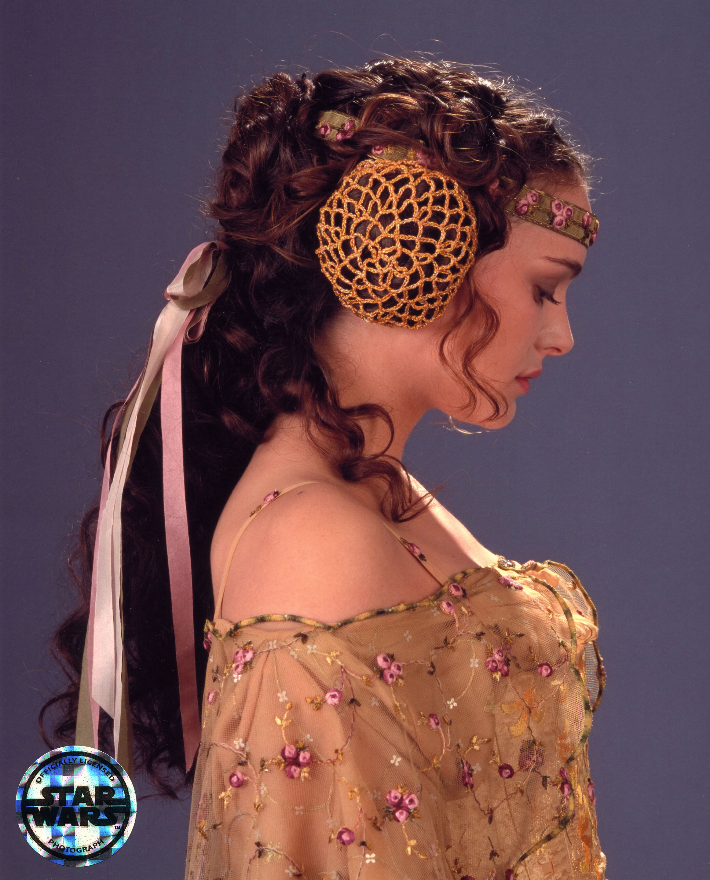 Finding Character in Clothing: The costumes of Padme Amidala   The ...
